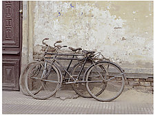 Bicycles Egypt by William Lemke (Color Photograph)