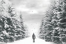 The Path by Jason Brueck (Giclee Print)