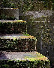 Mossy Steps of WWII Bunker #1 by Steven Keller (Color Photograph)