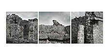 Triptych of Iguana - Tulum Ruins 1 by Steven Keller (Color Photograph)