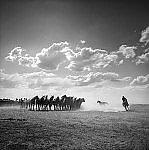The Escapee by Adam Jahiel (Black & White Photograph)