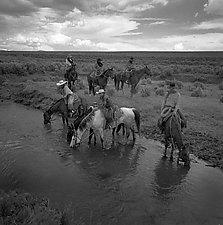 Cool Water by Adam Jahiel (Black & White Photograph)