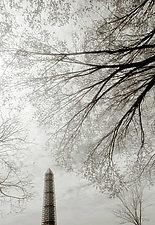Washington Monument #2, 1999 by Mel Curtis (Black & White Photograph)