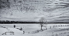 A Winter's Day - Apostle Islands, WI by J.L. Rodman (Black & White Photograph)