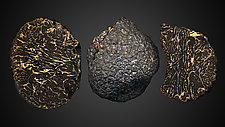 Perigord Black Truffle by Raphael Sloane (Color Photograph)