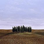 San Quirico D'Orcia by Christopher Young (Pigment Print)