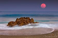 Moon Rocks by Melinda Moore (Color Photograph)