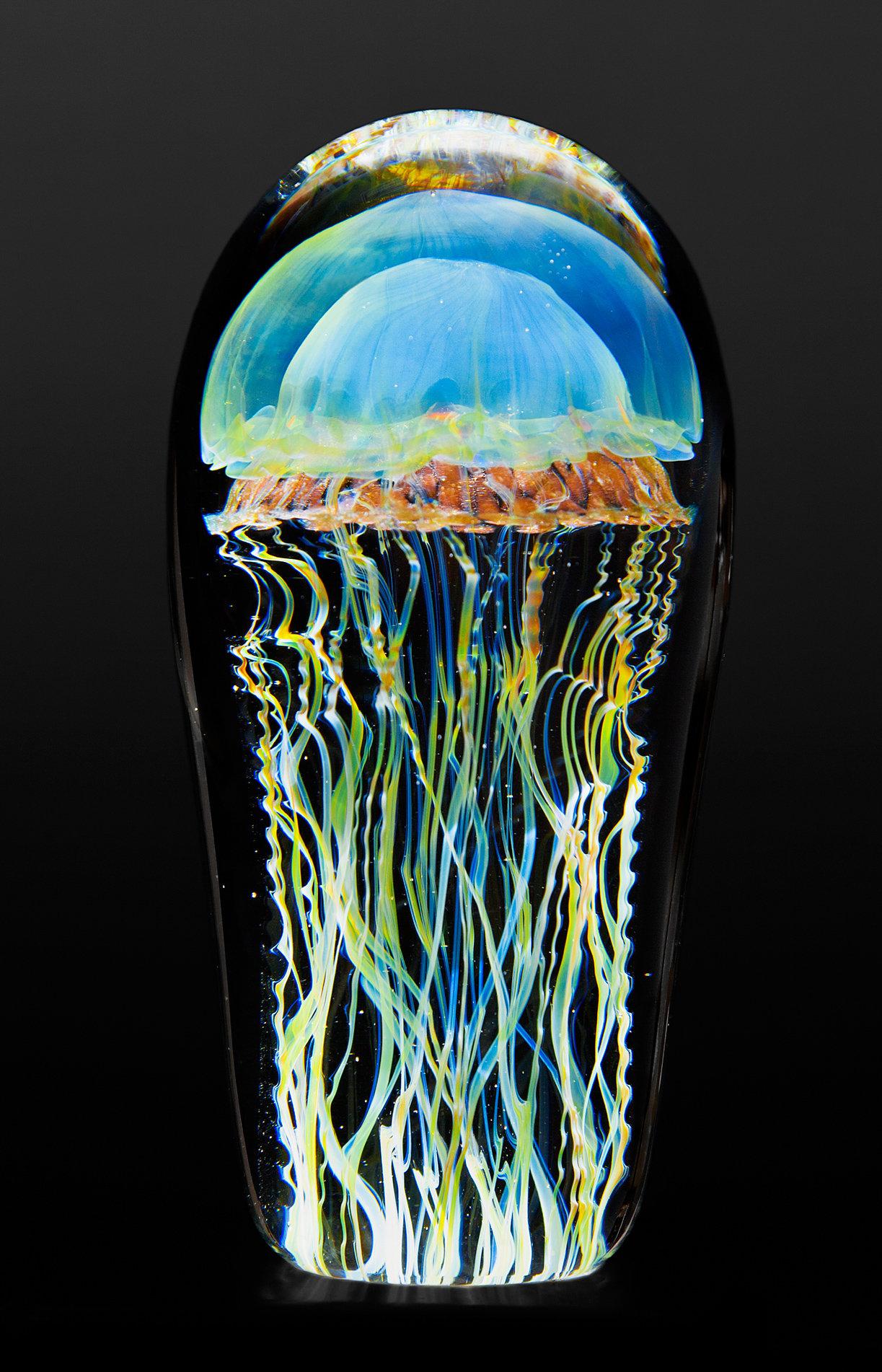 moon jellyfish small by richard satava  art glass