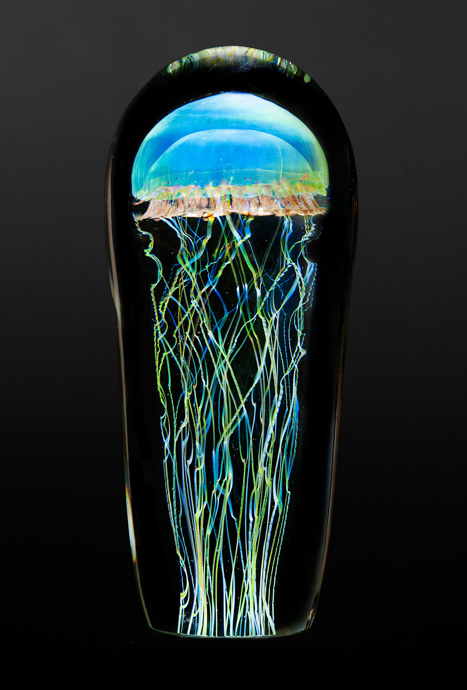Moon Jellyfish Large By Richard Satava Art Glass