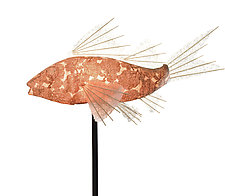 Copper Coral Koi Lamp by Lara Fisher (Mixed-Media Lamp)