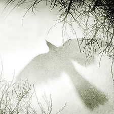 Courage III by Yuko Ishii (Black & White Photograph)