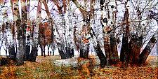 Autumn Wandering by LuAnn Ostergaard (Giclee Print)