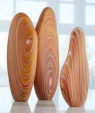 African Rosewood Driftwood Sculptures by Treg  Silkwood (Art Glass Sculpture)