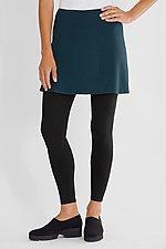 Striped Skirted Leggings by F.H. Clothing Co.  (Knit Leggings)