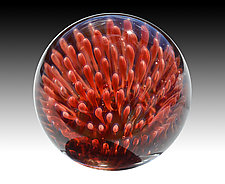 Anemone Marble by Aaron Slater (Art Glass Marble)