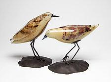 Shorebird Pair III by Janet Nicholson and Rick Nicholson (Art Glass Sculpture)
