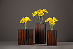 Macassar Ebony Bud Vases by David Kiernan (Wood Vase)