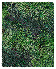 Monteverde by Tim Harding (Fiber Wall Hanging)