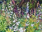 Karner Love Wild Lupine by Helen Klebesadel (Giclee Print)