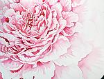 Pale Pink Peony by Helen Klebesadel (Watercolor Painting)