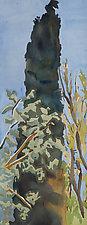 Cypress III by Meredith Nemirov (Watercolor Painting)