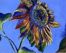 Sunset Sunflower by Jane Sterrett (Giclee Print)