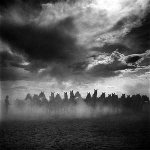 Remuda #1 by Adam Jahiel (Black & White Photograph)