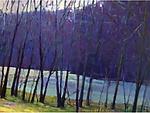 Winter Creek by Ken Elliott (Giclee Print)