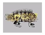Katzfish by Alison Palmer (Pigment Print)