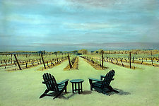 Vineyard in Summer by Elizabeth Holmes (Infrared, Hand Painted Photograph)
