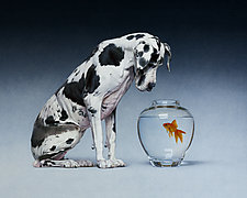 Dane and Fish by Christopher Young (Giclee Print)