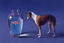Fish and Dog by Christopher Young (Giclee Print)