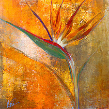 Bird of Paradise by Maeve Harris (Giclee Print)