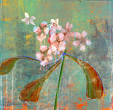 Orchid Study 1 by Maeve Harris (Giclee Print)