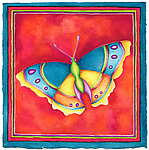Butterfly No. 9 by Rachel Tribble (Giclee Print)