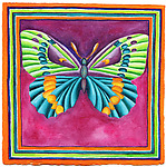 Butterfly No. 4 by Rachel Tribble (Giclee Print & Original Watercolor Painting)