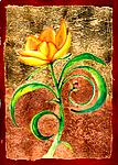 Yellow Flower by Rachel Tribble (Giclee Print)