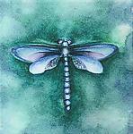 Ocean Dragonfly by Rachel Tribble (Giclee Print)
