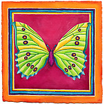 Butterfly No. 7 by Rachel Tribble (Giclee Print)