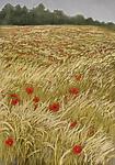 Poppy Field by Sherry Schreiber (Giclee Print)