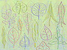 Leaf Forms 2 by Hal Mayforth (Giclee Print)