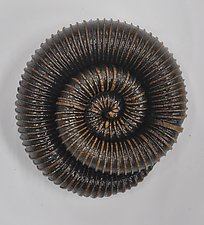 Coil Specimen by Kelly Jean Ohl (Ceramic Wall Sculpture)