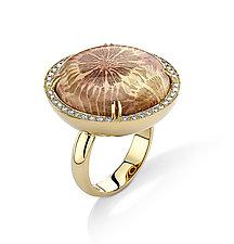 Round Coral Ring by Pamela Huizenga  (Gold & Stone Ring)