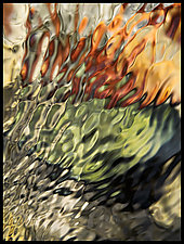 Unfiltered #127 by Jeff Grandy (Color Photograph on Aluminum)