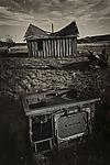 Remains by Lori Pond (Black & White Photograph)