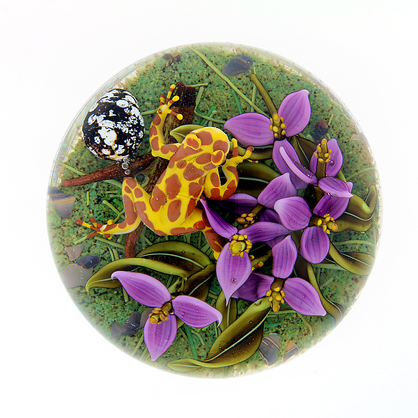 Clown Frog with Purple Flowers