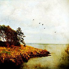 Shaw Island I by Yuko Ishii (Color Photograph)
