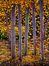 Aspen by Johnathan  Harris (Giclee Print)