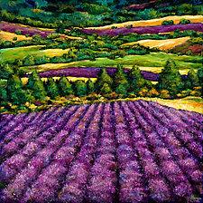 Tuscan Lavender by Johnathan  Harris (Giclee Print)