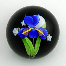 Blue Iris on Black Paperweight by Mayauel Ward (Art Glass Paperweight)
